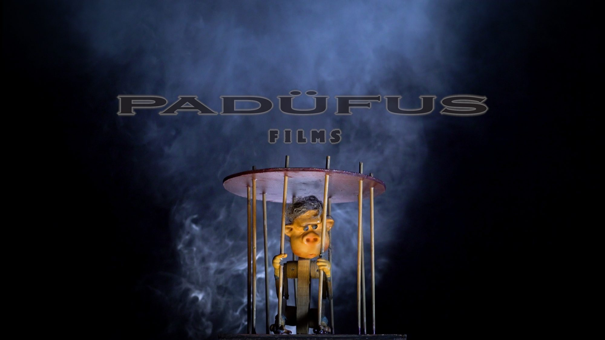 Padüfus Films strives to engender  feelings of curiosity, wonder and good humor by exploring the unusual in the familiar. We create comedies that entertain yet inspire and documentaries that educate through reflection and delight.